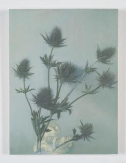 Victor Man, « Flower with Skeleton and Bear Wrestling », 2012 Huile sur toile, montée sur bois. 40 x 30 cm